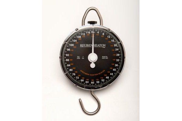 Reuben Heaton Specimen 240lb-4oz Scales