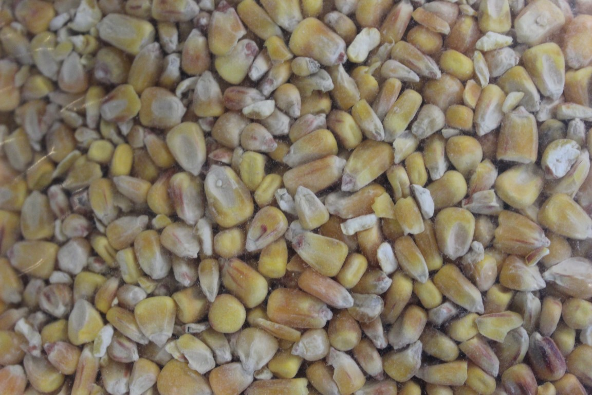 Browns Unprepared Maize 5kg